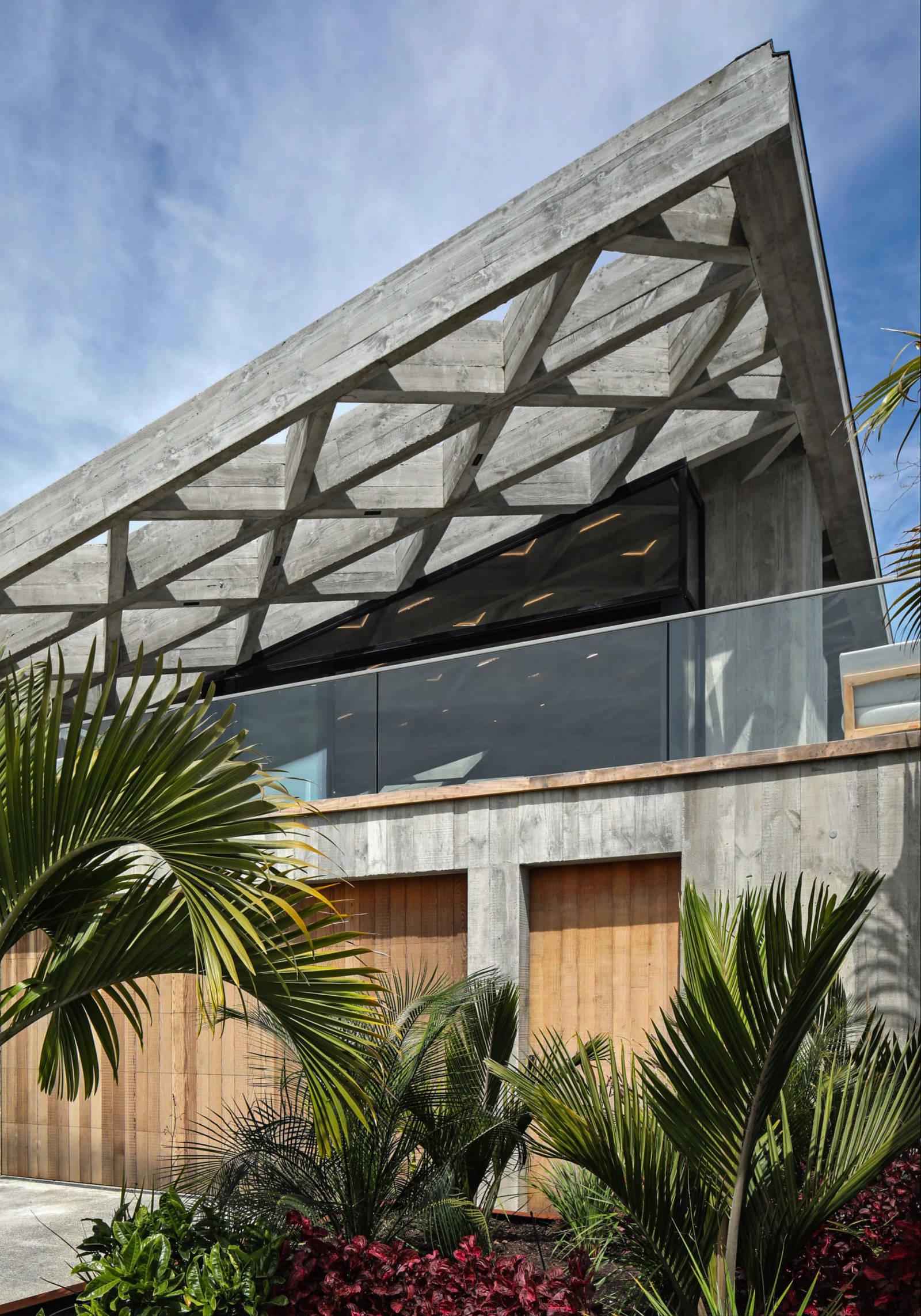 Diagrid House Jack Mckinney Architects